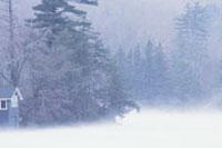 winterweather_d200px